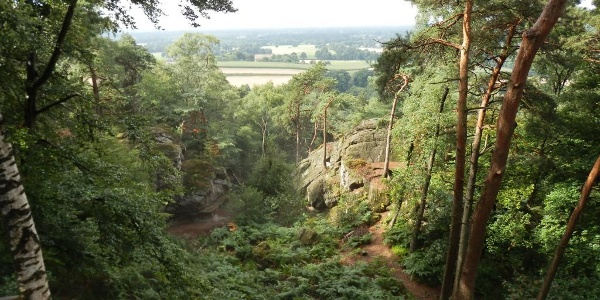 Blick von der Aussichtsplattform an den Dörenther Klippen