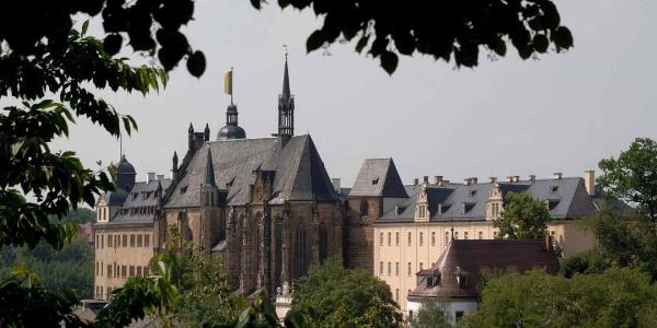 Residenzschloss aus der Ferne - Altenburg