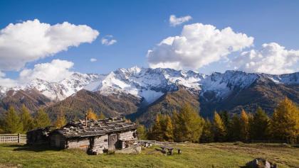 Alpenpanorama von den Holzerböden aus gesehen