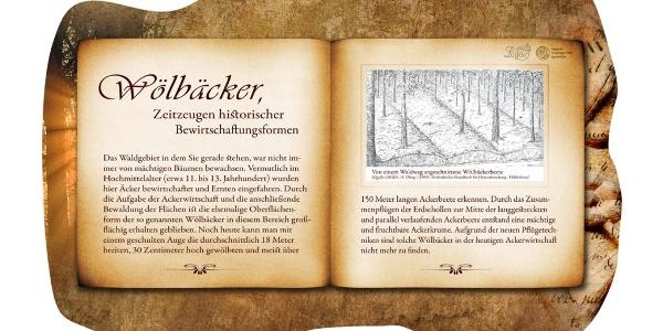 "Bankrücken ""Wölbäcker"