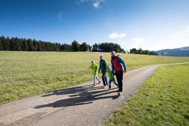 Furtwangen - Barrierefreie Wanderung nach Vöhrenbach