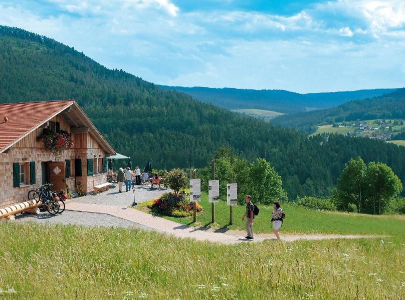 Baiersbronner Panoramasteig - Schwarzwälder Genießerpfad