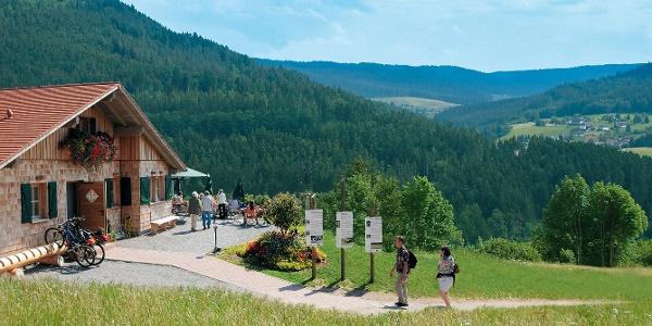 Panorama-Hütte