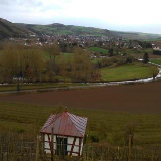 Blick vom Disibodenberg in Richtung Odernheim