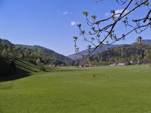 Schönau's Spazierpromenade - die Mühlmatt