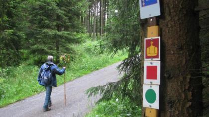 "Der Pilgerweg ""VIA ROMEA"""
