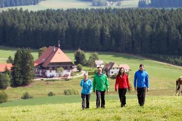 Furtwangen - Barrierefreie Wanderung zum Fallengrund