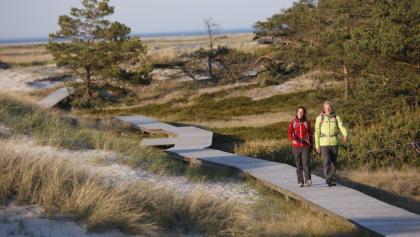 Lohnender Holzweg - auf dem Darß führen viele Wege direkt ans Meer