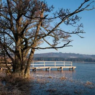 Ulmen – Der Jungferweiher