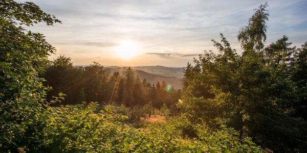 Blick von der Golddorf-Route auf das Schmallenberger Sauerland