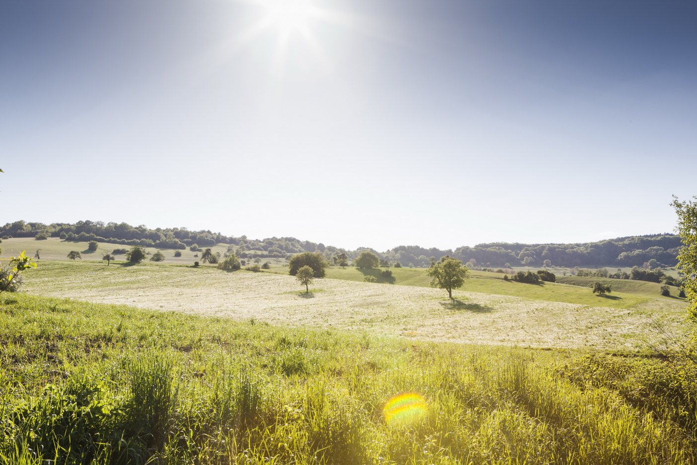 Bliesgau Landschaft