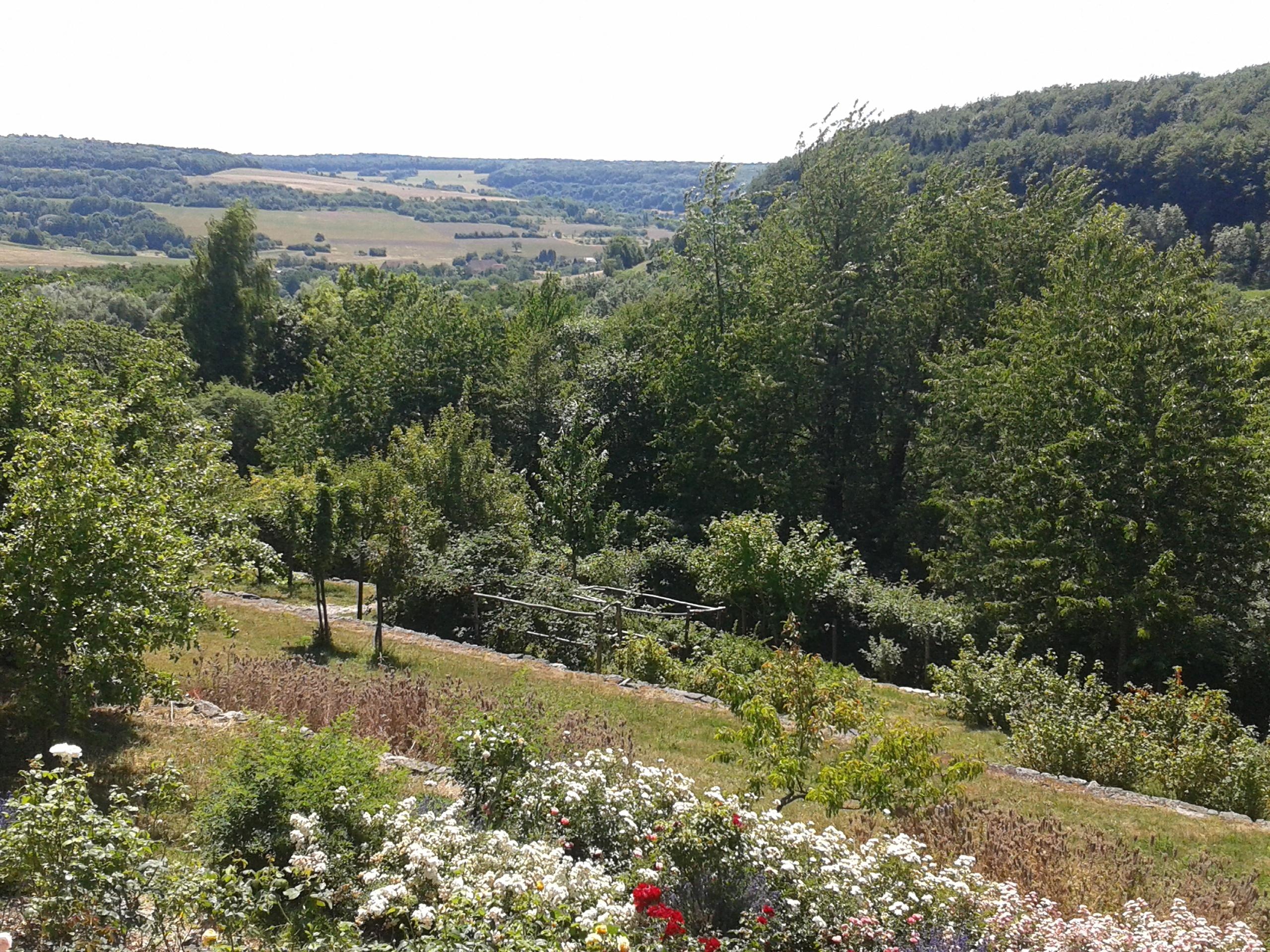 Blick auf den Garten von Haus Lochfeld - ein Garten mit Geschichte