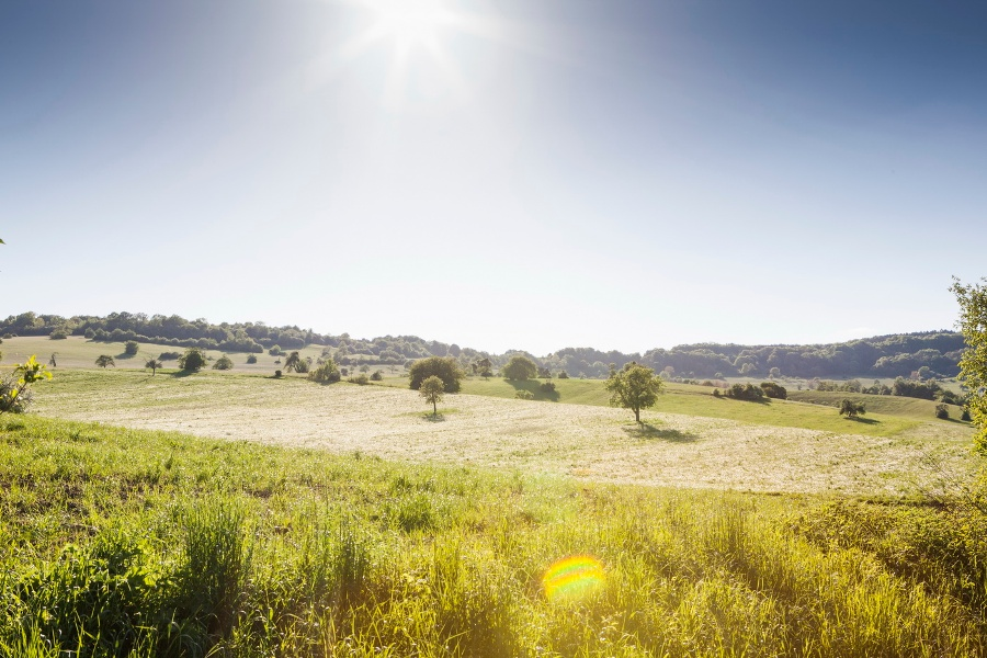 Radtour Gärten mit Geschichte - Große Gartenrunde über luftige Höhen - West