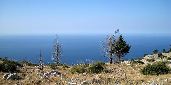 Blick hinaus aufs Meer