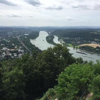 Auf dem Drachenfels (Sommer)
