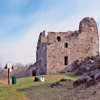 Ruine der romanischen Burg Přimda (Pfraumberg)