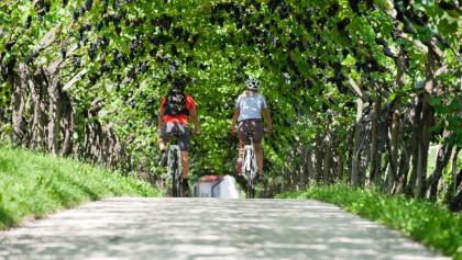 Radfahren in Südtirols Süden