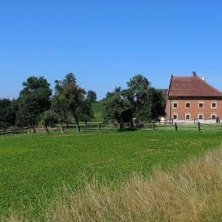 Überall bei den Bauernhäusern finden sich die alten Mostobstgärten