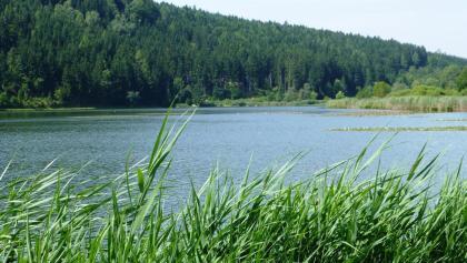 Ansicht Urbansee