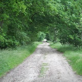 Weg zwischen Stade und Hagenermühle