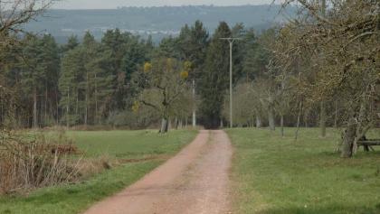 Blick über Trassem auf den Saargau