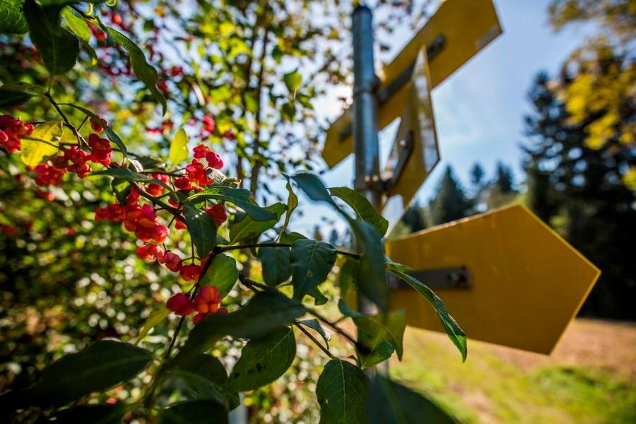 Trimmparcours Rosenheim-©Autor: Stephanie Vorleitner , Quelle: Chiemsee-Alpenland Tourismus