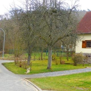 Startpunkt in Schwarzerden