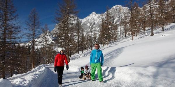 Skiweg - Türlwand