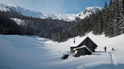 Aufstieg, Breitenbergalm, rechts im Hintergrund liegt der Gipfel noch verborgen.