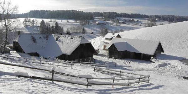 Winterlandschaft bei der Siedlung Dreihäusle