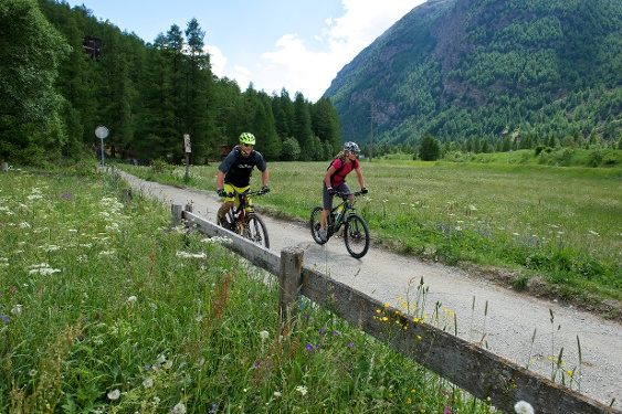 Bike-Tour Zermatt - Visp