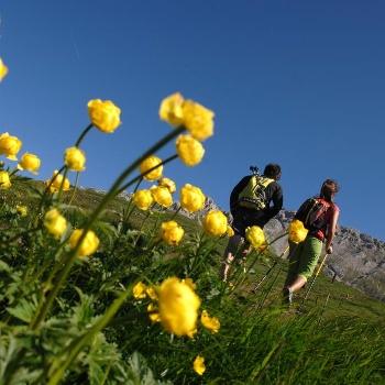 Hiking in Val di Fiemme