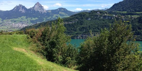 saftige Weiden und markante Berge (Mythen)
