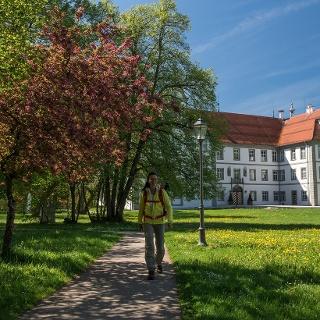 Blick aufs Schloss Neue Schloss Kißlegg