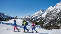 Ski Touring to the Staller Saddle
