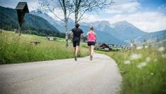 Jogging: Niederrasen