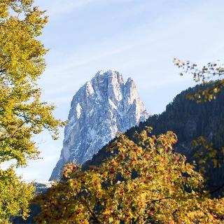 View to Sassolungo