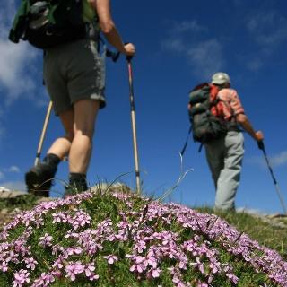 Tirolo High Mountain Trail in the Passeiertal Valley