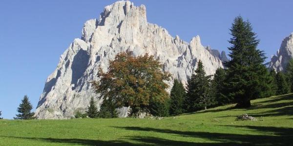 Giro della marmotta all'Alpe di Siusi