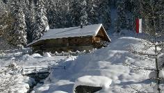Passeggiata invernale alla Malga Lercher