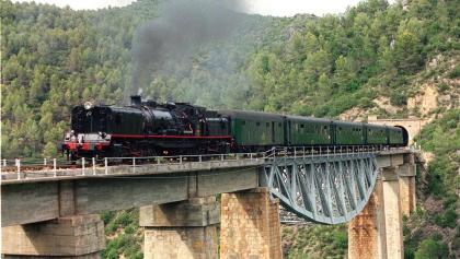 Tren de Vapor. Tren dels Llacs