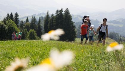 Wandern Gais, Gäbris-Tour