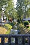 Unterwegs auf dem 3. Abschnitt der Schlossparkradrunde - @ Autor: MS&P, Michael Schott - © Quelle: Tourismusverband Ostallgäu e.V.