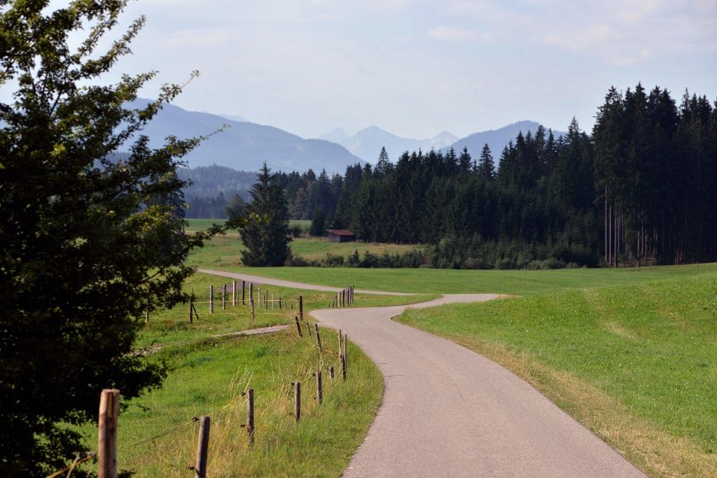Radweg auf dem 4. Abschnitt der Schlossparkradrunde - @ Autor: MS&P, Michael Schott - © Quelle: Tourismusverband Ostallgäu e.V.
