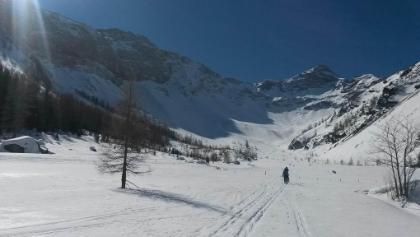 Blick Mittelzalimalpe Richtung Panülerkopf
