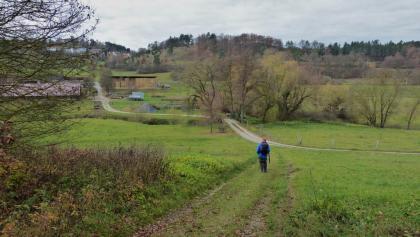 """F10: Weg hinunter zur Würm und zum Aussiedlerhof """"Würmtalhof"""""""