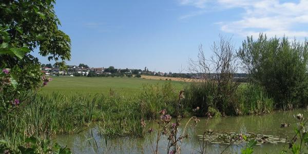 Blick auf Oggenhausen von den Teichen am Magdalenenjauchert