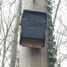 Nistkasten für Fledermäuse