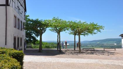 Ausblick vom Schloss Fürstenberg ins Wesertal