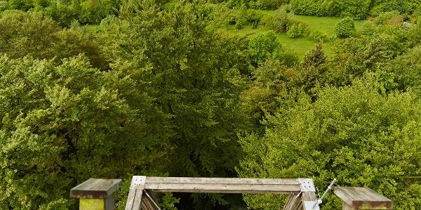 Sollingturm mit traumhaftem Ausblick über die Landschaft